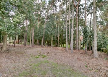 Land for sale in Badger Brook Wood, Badger Brook Lane, Astwood Bank B96