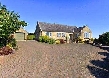 Thumbnail 3 bed detached bungalow to rent in Low Moor Lane, Scotton, Knaresborough