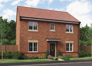"Thumbnail 4 bed detached house for sale in ""Buchan"" at Hastings Close, Chesterfield"