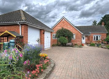 Thumbnail 3 bedroom detached bungalow for sale in Hardingham Street, Hingham, Norwich