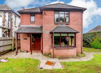 Thumbnail 3 bed detached house for sale in Chepstow Road, Newport