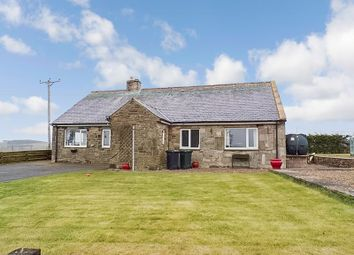 Thumbnail 3 bed bungalow for sale in Wark, Hexham