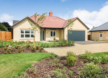 Thumbnail 2 bed detached bungalow for sale in Cote Road, Aston, Bampton