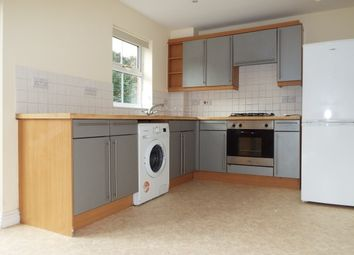 Thumbnail 4 bedroom property to rent in Winton Street, Southampton