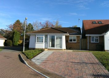Thumbnail 2 bedroom detached bungalow to rent in Clos Nant Y Cor, Pontprennau, Cardiff