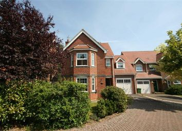 Thumbnail 4 bed detached house to rent in Pinewood Crescent, Hermitage, Thatcham