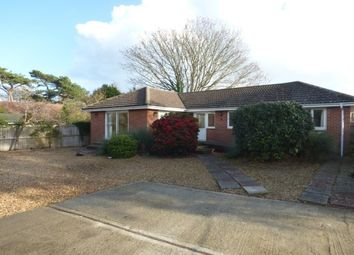 Thumbnail 3 bed bungalow to rent in Steyne Road, Bembridge
