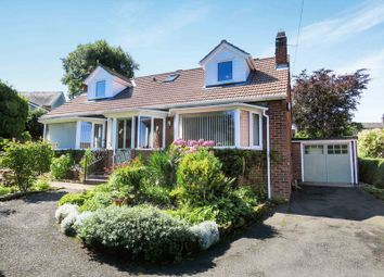 Thumbnail 4 bed detached house for sale in The Avenue, Alnwick