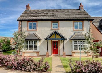 Thumbnail 4 bed detached house for sale in Haining Avenue, Dumfries