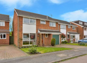 Thumbnail 4 bed detached house for sale in Fontmell Close, St.Albans