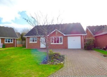 Thumbnail 2 bed bungalow for sale in Scholars Green, Wigton, Cumbria