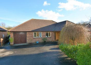 Thumbnail 3 bed bungalow for sale in Cwmifor, Llandeilo