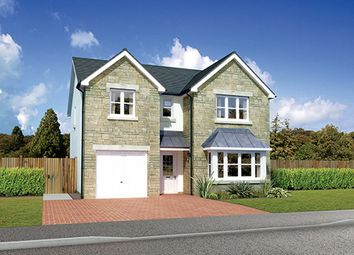 "Thumbnail 4 bed detached house for sale in ""Hampsfield"" at Colinhill Road, Strathaven"