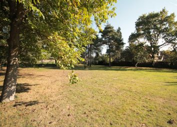 Thumbnail Land for sale in The Drive, Ifold