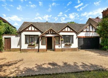 Thumbnail 4 bed detached bungalow for sale in Bath Road, Taplow, Maidenhead