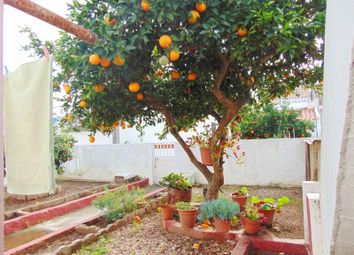 Thumbnail 3 bed detached house for sale in Figueira Dos Cavaleiros, Ferreira Do Alentejo, Beja