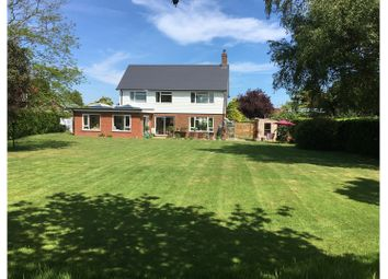 Thumbnail 4 bed detached house for sale in Hawksdown, Walmer