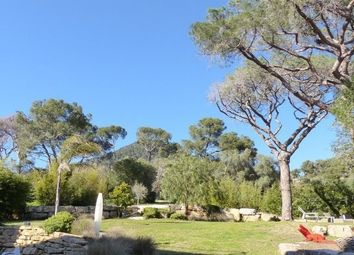 Thumbnail 5 bed property for sale in Carqueiranne, Var, France
