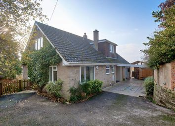 Thumbnail 4 bed detached house for sale in Bozley Hill, Cann, Shaftesbury
