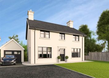 Thumbnail 4 bedroom detached house for sale in 28, Belvoir Park, Belfast