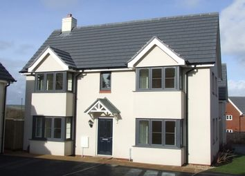 Thumbnail 3 bed semi-detached house to rent in Mimosa Way, Paignton