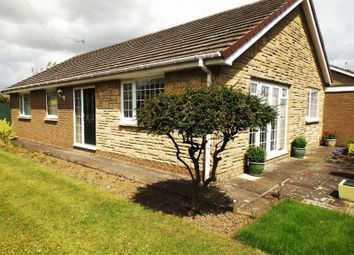Thumbnail 3 bed bungalow for sale in Castle View, Amble, Morpeth