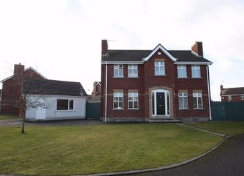 Thumbnail 4 bedroom detached house for sale in Lord Moira Park, Ballynahinch, Down