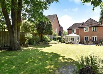 Thumbnail 4 bed detached house for sale in Milden Close, Frimley Green, Camberley