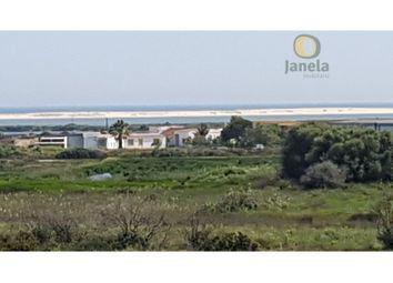 Thumbnail 4 bed finca for sale in Tavira, 8800-412 Tavira, Portugal