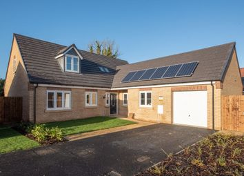 Thumbnail 4 bed detached bungalow for sale in Wardentree Lane, Pinchbeck, Spalding