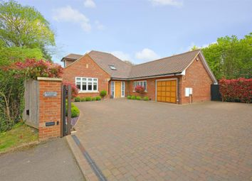 Thumbnail 4 bed detached house to rent in The Pathway, Radlett