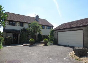 Thumbnail 4 bed detached house to rent in Glovers Close, Milborne Port, Sherborne