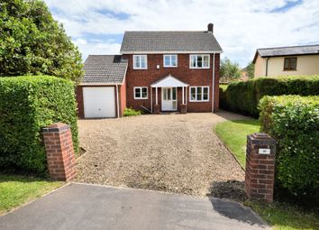 Thumbnail 4 bed detached house to rent in Norwich Road, Attleborough