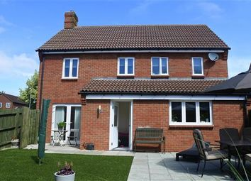 Thumbnail 4 bed property for sale in Trinity Road, Shaftesbury