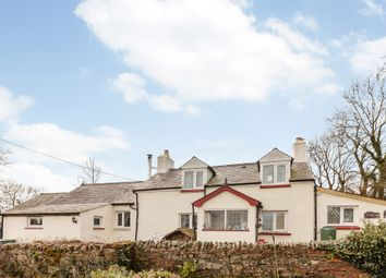 Thumbnail 1 bed detached house for sale in Ffynnonwen, Llandysul, Ceredigion