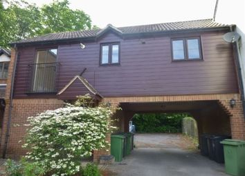 Thumbnail 2 bed property to rent in Gander Drive, Basingstoke