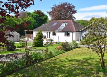 Thumbnail 4 bed bungalow for sale in Whitford, Axminster, Devon