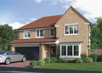 """Thumbnail 5 bedroom detached house for sale in """"The Bayford"""" at Elm Avenue, Pelton, Chester Le Street"""