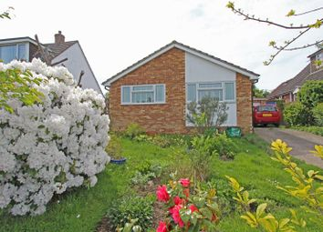 2 bed detached bungalow for sale in Anderwood Drive, Sway, Lymington SO41