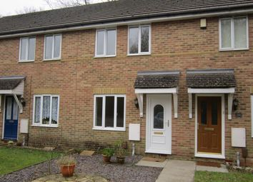 Thumbnail 2 bed semi-detached house to rent in Sorrel Drive, Whiteley, Fareham