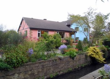 Thumbnail 5 bedroom detached house for sale in Derby Road, Denby, Ripley