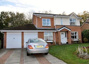 Thumbnail 4 bed detached house for sale in Collingwood Drive, Hexham