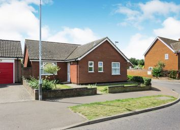 3 bed detached bungalow for sale in Chapel Road, Attleborough NR17