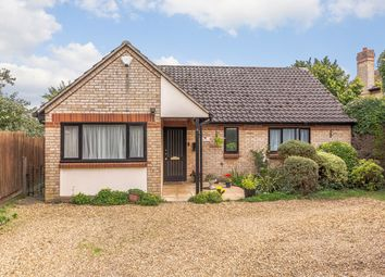 Thumbnail 4 bed detached bungalow for sale in New Farm Road, Cambridge