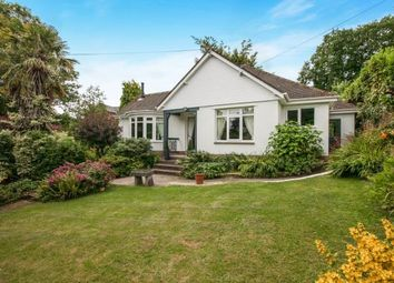 Thumbnail 4 bedroom detached house for sale in Sidmouth, Devon, .