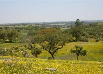 Thumbnail Land for sale in Ourique, Beja, Portugal