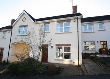 Thumbnail 4 bed town house to rent in Cedar Hill, Ballynahinch
