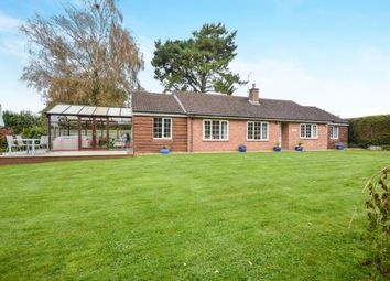 Thumbnail 4 bed bungalow for sale in Martin, Fordingbridge, Hampshire