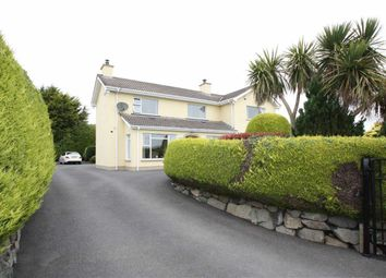 Thumbnail 5 bed detached house for sale in Guiness Road, Ballynahinch, Down