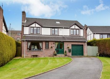 Thumbnail 4 bed detached house for sale in Newtown Gardens, Newtownards